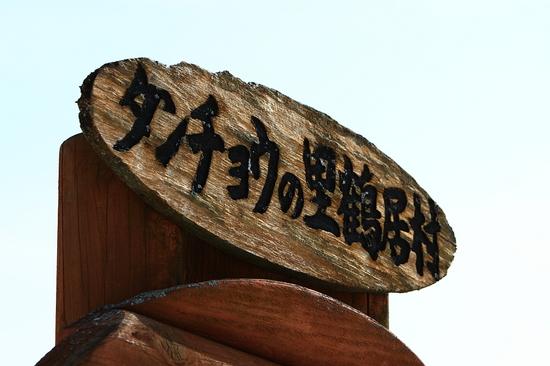 IMG_3670-1.JPG